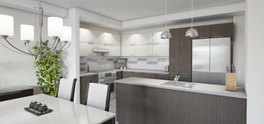 Choix de mat riaux pour votre cuisine for Armoire de cuisine thermoplastique prix